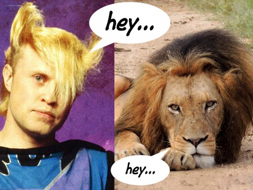 20130507-emo-lion-hey-800